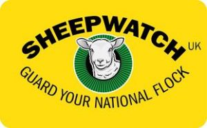 sheepwatch