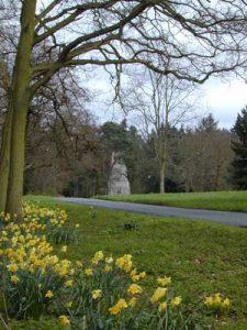 springgreen